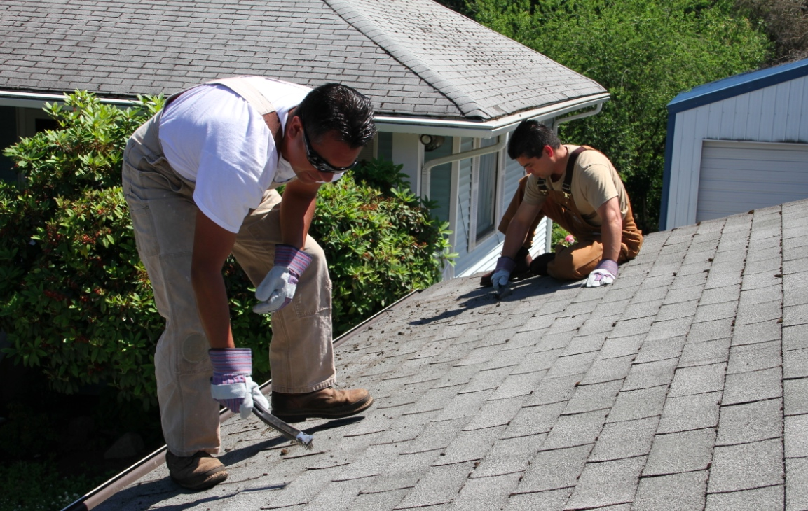 Seattle Roof Cleaning News: Protection Tips for Your ...